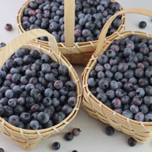 Make your own Blueberry Juice