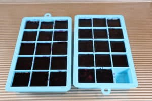 blueberry juice concentrate in ice cube trays
