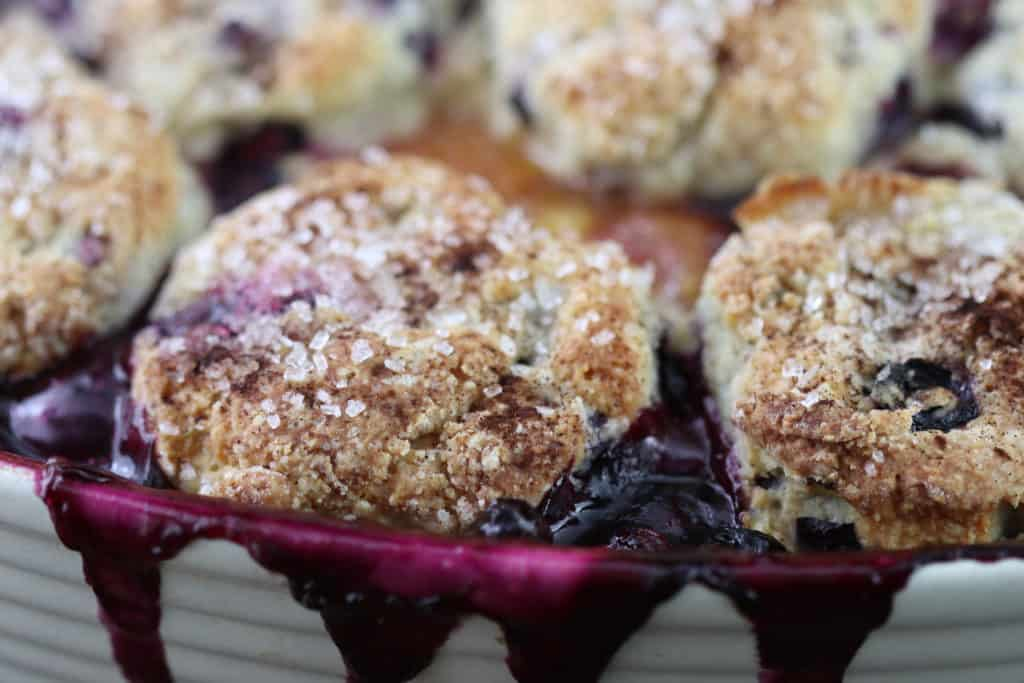 blueberry cobbler with scone topping in a baking pan
