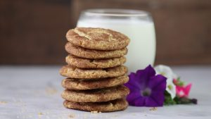 Snickerdoodle Cookie Recipe – The Best
