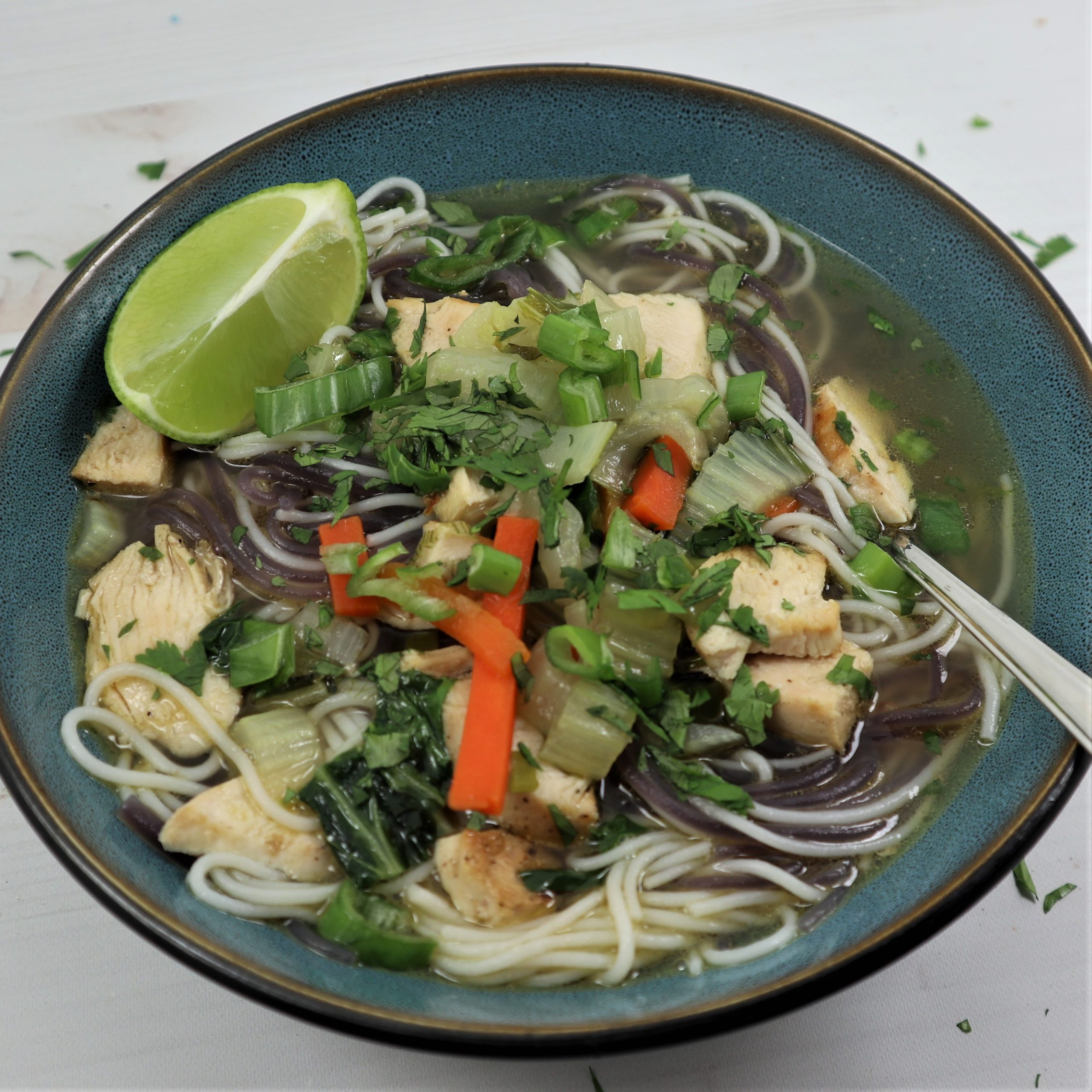 Chicken Pho Soup Bowl – Easy