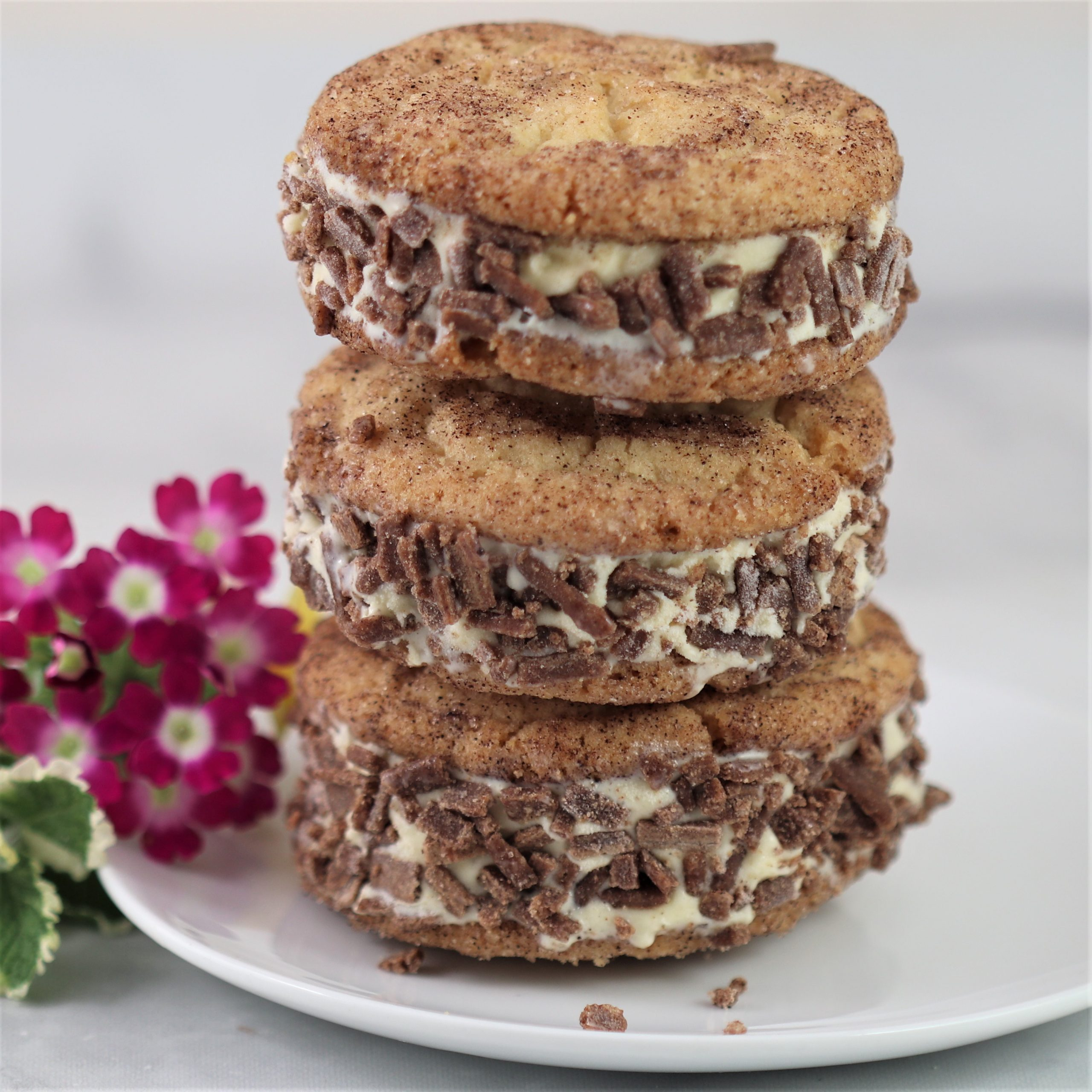 You are currently viewing Snickerdoodle Ice Cream Sandwiches